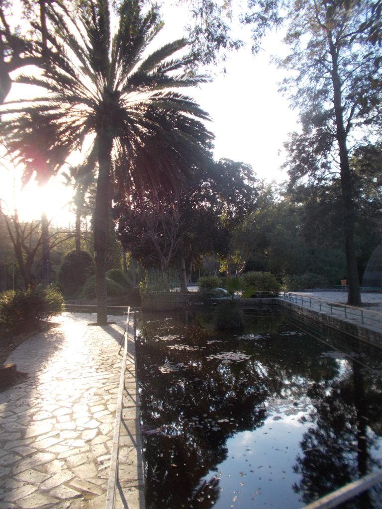Garden of Eirinis